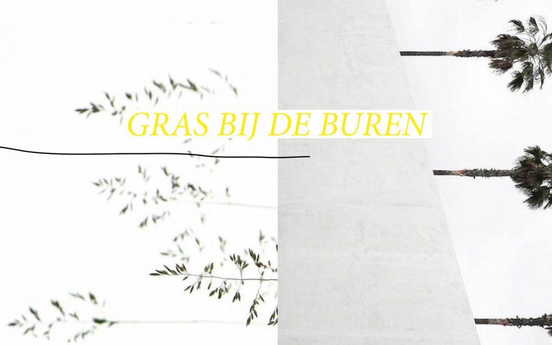 26/08/2018 Feiko Reitsema / Gras bij de buren: De zegen van God