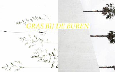 12/08/2018 Feiko Reitsema / Gras bij de buren: Waar ligt je focus?