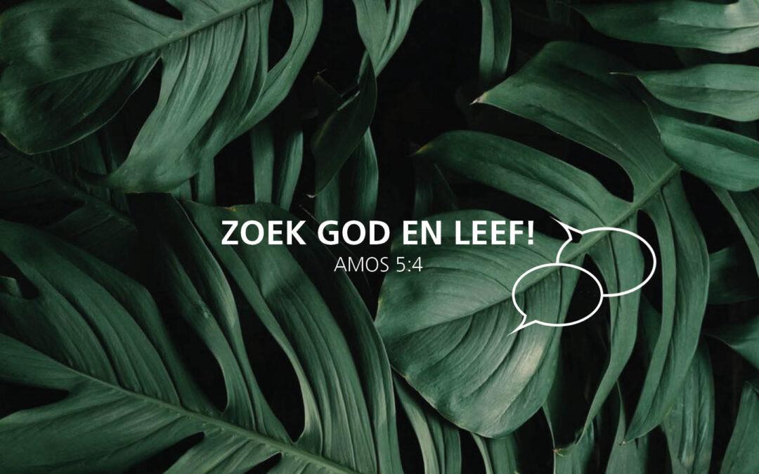 31/01/2021 FEIKO REITSEMA / ZOEK GOD EN LEEF: EEN RUMOERIGE HEMEL